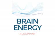Brain Energy Blueprint
